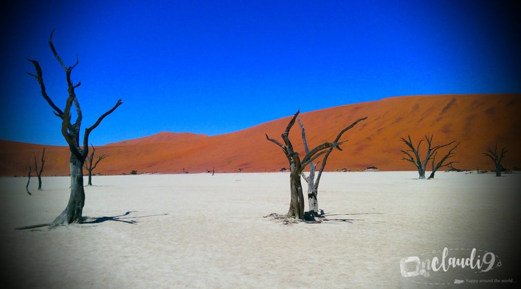 This is Sossusvlei in Naimibia, which is a salt and clay pan. Large red dunes, which are the highest in the world, surround the pan. It´s Namibias most visited attraction.