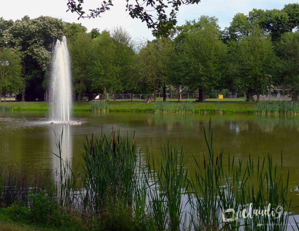 """This is Clara-Zetkin-Park, which is the green lung of Leipzig with its trendy """"Sachsenbrücke"""" (a meeting point) is located in that neighbourhood as well. If you enjoy chilling, relaxing, singing and mingling with """"Leipziger"""" – this is the perfect spot for you."""