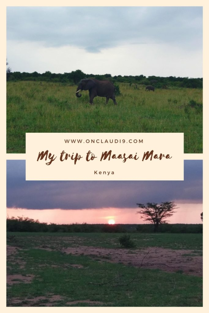This is Maasai Mara National Park in Kenya.