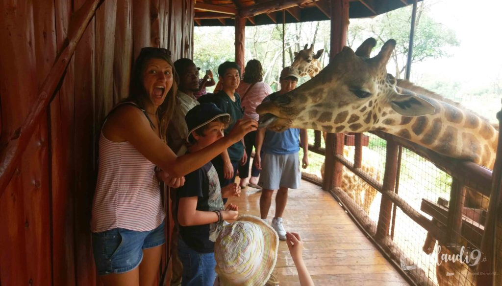 This is at the Giraffe Center in Nairobi Kenya.