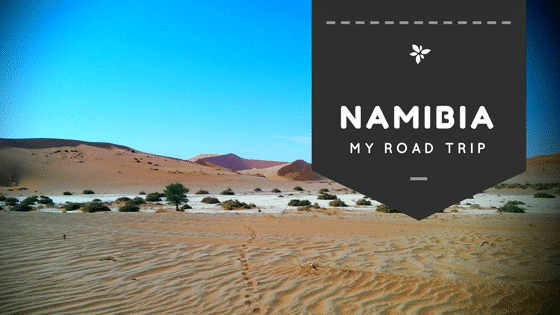 This is the Namibian desert next to Sossusvlei