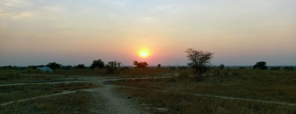 This is how a sunset in Liwonde National Park in Malawi looks like.