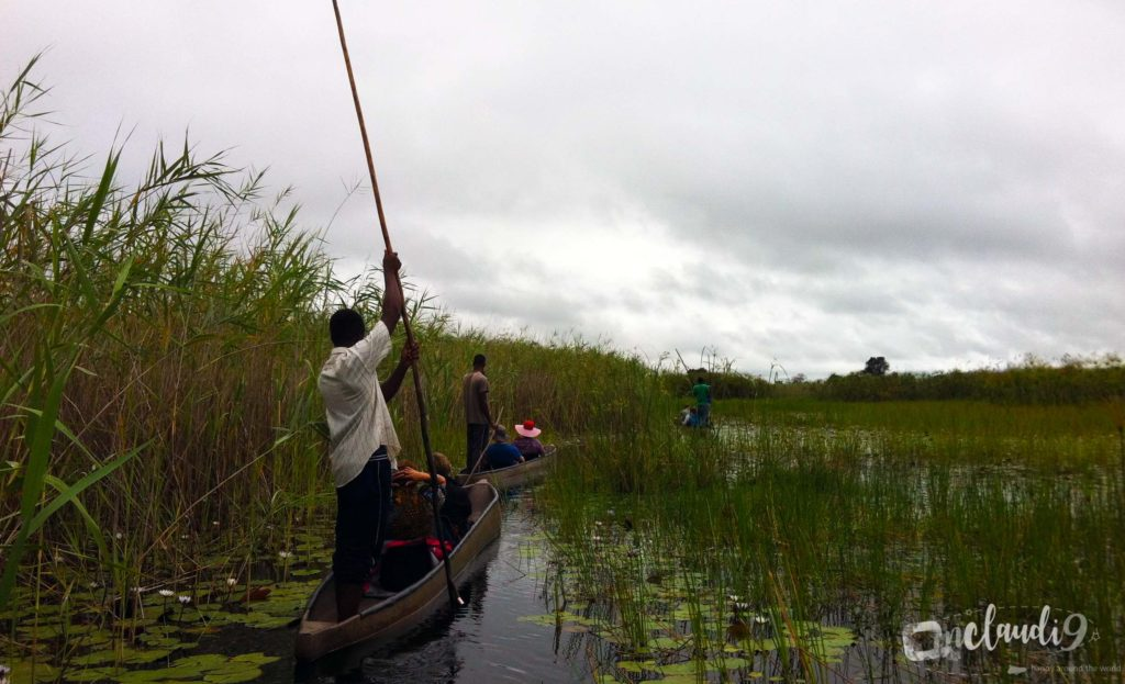 This is a Mokoro, a traditional boat you can go on a ride on a ride on the water of Okavanga Delta in Botswana.