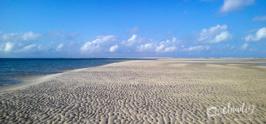 This is the white, sandy beach of Bazaruto in Mozambique.