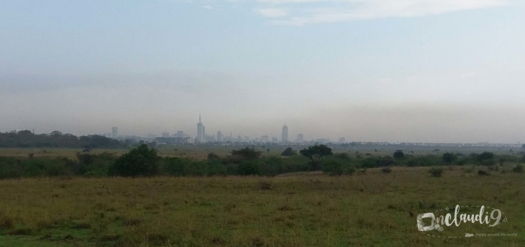 This is Nairobi National Park, the only National Park in the world that is in a city.